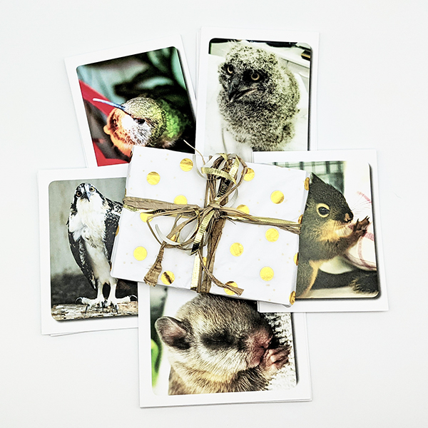 WSWS Gift Cards