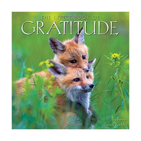 WSWS Gratitude Book