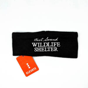 WSWS Headband Black