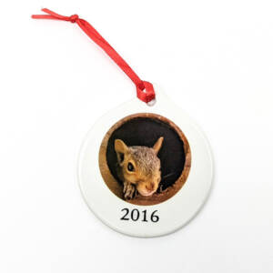 WSWS Ornament 2016
