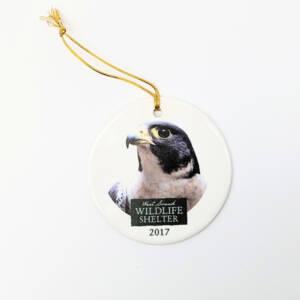 WSWS Ornament 2017