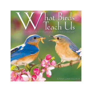 WSWS- What Birds Teach Us
