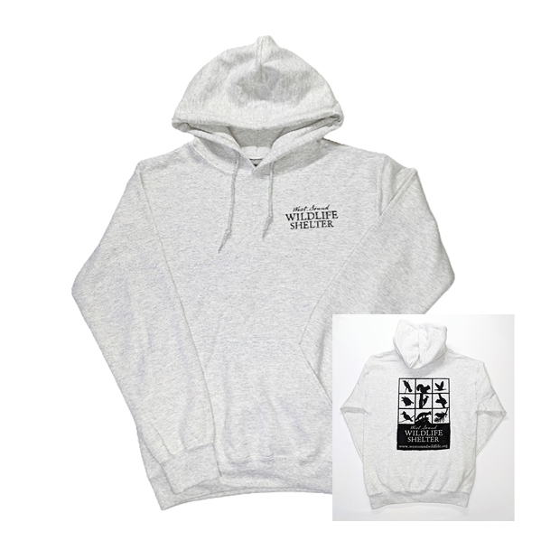 WSWS- Ash gray pullover hoodie