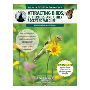 WSWS Attracting Birds, Butterflies, and Other Backyard Wildlife