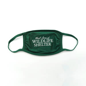 WSWS Face Mask Green