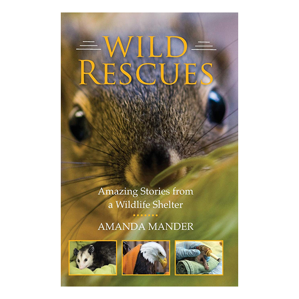 WSWS Wild Rescues