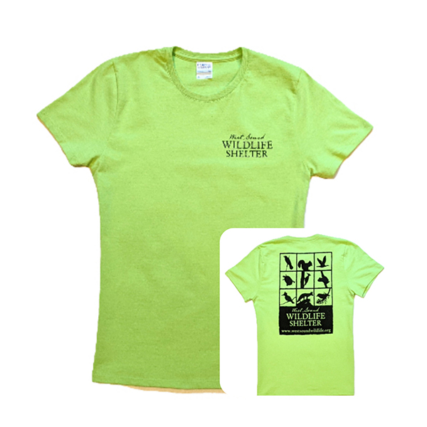 WSWS Lime ladies tshirt