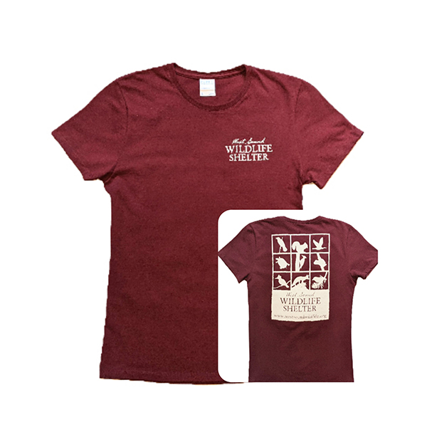 WSWS Maroon ladies tshirt