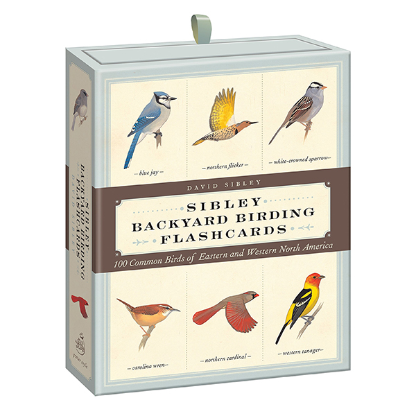 WSWS Birding Flashcards