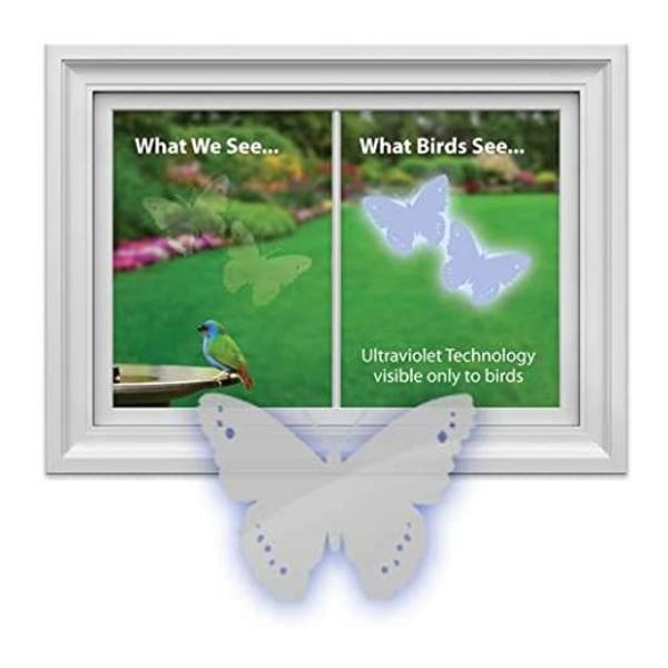 WSWS Butterfly window alert