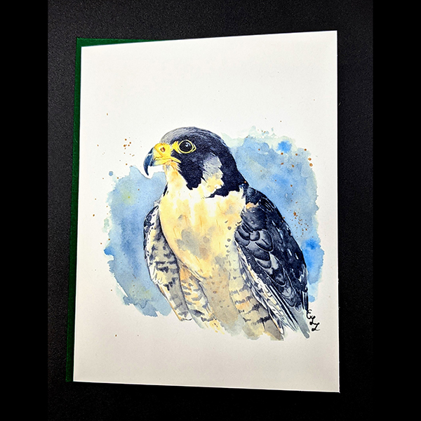 WSWS Emma gift cards falcon