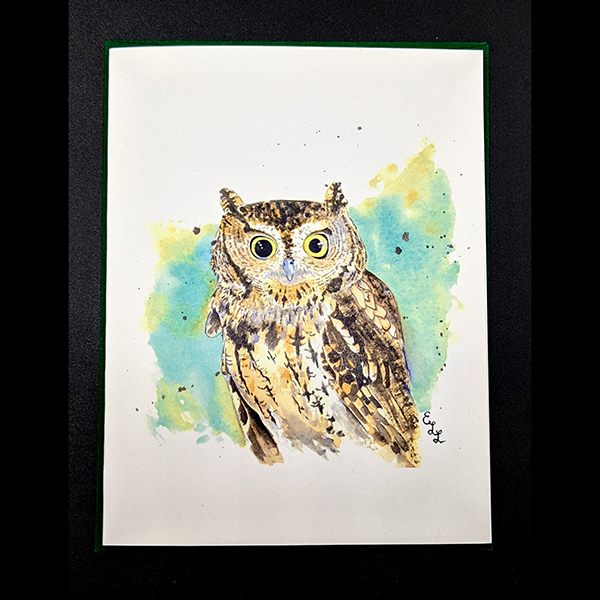 WSWS Emma gift cards owl