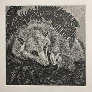 WSWS Kathryn Anderson Virginia Opossum